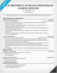 Vice President Resume Samples Human Resources Panion Of