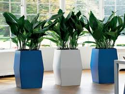 Indoor Flower Pots And Planters : Modern Indoor Planters Ideas ... Painted Flower Pots For The Home Pinterest Paint Flowers Beautiful House With Nice Outdoor Decor Of Haing Creative Flower Patio Ideas Tall Planter Pots Diy Pot Arrangement 65 Fascating On Flowers A Contemporary Plant Modern 29 Pretty Front Door That Will Add Personality To Your Garden Design Interior Kitchen And Planters Pictures Decorative Theamphlettscom Brokohan Page Landscape Plans Yard Office Sleek