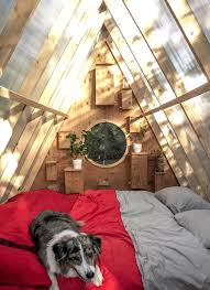 100 Tree House Studio Wood Birds And Humans Share Wooden Treehouse In Western Canada By
