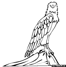 Eagle Coloring Pages Bird Animals 38