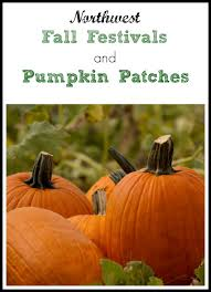 Pumpkin Patch Tampa 2014 by 298 Best Fall Break Ideas For Families Images On Pinterest