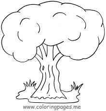 Coloring Pages Fall Tree Outline Simple Fall Tree Outline