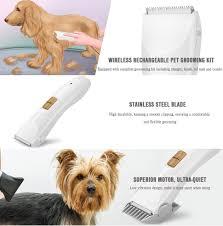Dog Hair Shedding Blade by Amazon Com Bengoo Professional Dog Grooming Kit Cat Pet Hair