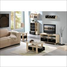 Rectangular Living Room Layout by Living Room Magnificent Staging A Rectangular Living Room
