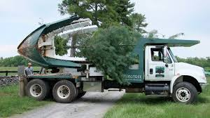 Moving Trees At The State Arboretum Of Virginia | Shade Tree Farm 1977 Chevrolet 30 Pickup Truck With Tree Spade Item Dc1943 Cci Tree Movers Service Moving Relocating Service Using Mechanical Planter Pin By Jamber Pie On Wyosobniarka Witolda Pinterest Youtube Baumalight Nomad Spades 1998 Mack Dm690s Big John Dd768 1996 Intertional 4700 Vmeer Four More Favorite Northern Virginia Shade Trees Surrounds 1956 6409 Dv9014 So Eagle Ridge Large Sales Delivery Railroad Ties