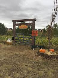 The Great Pumpkin Patch Pueblo Colorado by Long Neck Pumpkin Farm