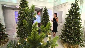 10ft Christmas Tree Artificial by Interior Christmas Tree Seedlings Spruce Christmas Tree