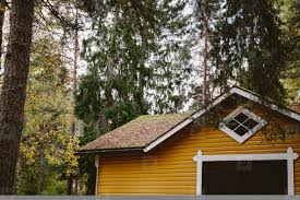 100 House In Forest Fragment Of Wooden Finnish Yellow House In A Forest