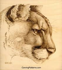 317 best pyrography wildlife images on pinterest pyrography