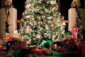 Are Christmas Trees Poisonous To Dogs Uk by When Is The Best Time To Put Christmas Decorations Up And Where To