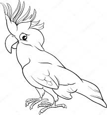 Cockatoo Parrot Coloring Page Stock Vector © Izakowski 73608933