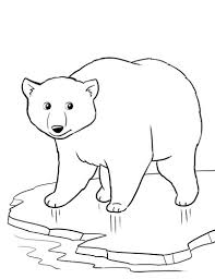 Free Polar Bear Worksheet For A Winter Theme Unit Worksheets Coloring Animal PagesColoring