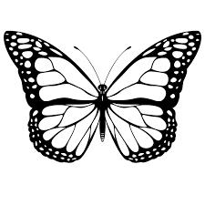 Mariposas Para Colorear 🥇 𝐃𝐢𝐛𝐮𝐣𝐨𝐬 𝐩𝐚𝐫𝐚
