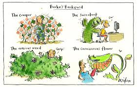The Cathy Wilcox On Twitter: