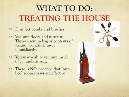 WHAT TO DO TREATING THE HOUSE