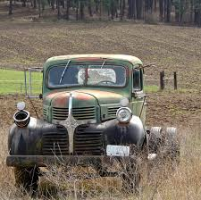 Old Dodge Farm Truck | Pritzap | Flickr Free Images Car Farm Country Transport Broken Abandoned Junk Its A Good Day Virginia Views Dogs Run Farm Truck In Old Four Wheel Drive Trucks Lebdcom Abandoned Equipment And Vehicles Found Intertional Stock Photos Transport Vintage Picture I3008119 At Buildings Fields Agriculture Hi Res Bangshiftcom Auction Engines Trucks Hit And Miss Fostermak Making Art Known Shop Project Twin City Auto Works Pumpkins On Red Photo Edit Now 62794153 Dodge Rurality Blog Hop 12 The View From Right Here