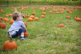 Pumpkin Patches Cincinnati Ohio Area by Fall On The Farm At Blooms U0026 Berries U2013 Cincinnati Parent Magazine