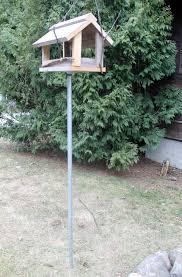 The Bird Feeder Coon undrum
