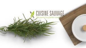 cuisine sauvage greenpig cuisine sauvage
