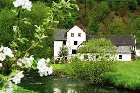 ferienhaus haus im westerwald in seelbach westerwald rheinland pfalz deutschland mieten micazu