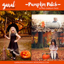 Pumpkin Patch Caledonia Il For Sale by Pumpkin Patch Photoshop Overlays Halloween Overlays Autumn