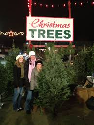 Making Christmas Tree Preservative by Boston Christmas Trees Open Daily From Thanksgiving To Christmas