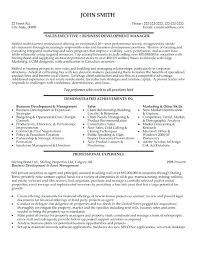 Executive Sales Resume Sample T Cv Format Pdf
