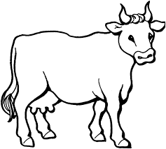 Kids Coloring Pages Uncategorized Printable Print Easy Cow Drawing Picture Of A Cowboy Hat