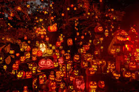 Motley Pumpkin Patch by The Jack O U0027 Lantern Spectacular In Louisville Ky Travel Pinterest