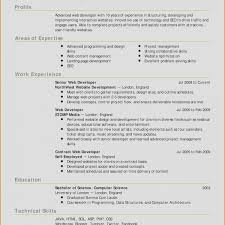 30 Free Cv Format For Job Gallery