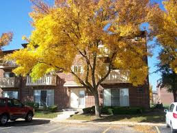 2 Bedroom Houses For Rent In Memphis Tn by Rooms For Rent In Chicago U2013 Apartments Flats Commercial Space