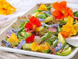 bourrache cuisine salade du jardin aux fleurs de bourrache et de capucine recettes