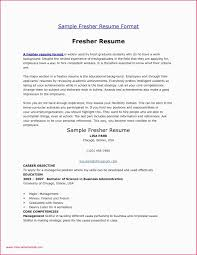 Our Best Gallery Of 47 Sample Resume Career Objective Finance Graduate