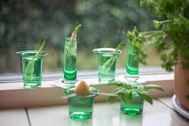 6 tipps für frische kräuter in der küche ikea unternehmensblog
