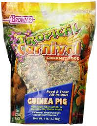 Can Guinea Pigs Eat Pumpkin Seeds by Amazon Com F M Brown U0027s Tropical Carnival Guinea Pig Food 20