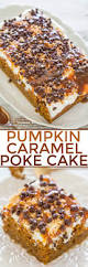 What Kinds Of Pumpkins Are Edible by Best 25 Pumkin Cake Ideas On Pinterest Pumpkin Thanksgiving
