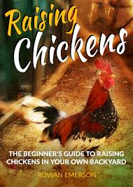 Buy Chickens In Your Backyard: A Beginner's Guide In Cheap ... Cheap How To Raise Chickens Find Deals On Heritage Chicken Breeds For Your Backyard With 1000 Images About Buy Guide Beginners Easy Steps Starting Egg Production Homestead Advisor 7 Reasons You Should Raising 101 In In Magnolia Market Chip Joanna Gaines 1251 Best Images Pinterest The Chick Veterinary Care For A Big Ed Barnham Limited Free Range 12 Tips To Balance Freedom Safety