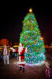 Publix Christmas Trees 2014 by Featured The Island News Beaufort Sc Part 6