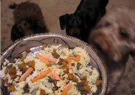 Pumpkin For Pets Diarrhea by Bland Diet Recipes For Dogs With Upset Stomach Pethelpful