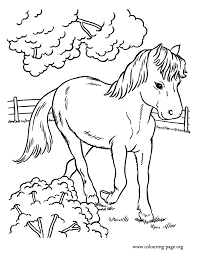 Full Size Of Coloring Pagesgraceful Cute Horse Pages Cartoon Little