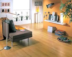 Linoleum Designs For Living Room Flooring In Large Size Of To Laminate