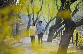 xihu qu 2018 avec photos in pics the color of s daily
