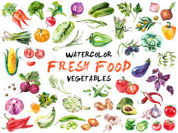 Watercolor painted collection of ve ables Hand drawn fresh food design elements isolated on white background