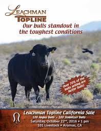 2016 TopLine By Leachman - Issuu 1021cattle6ajpg Purple Reign Cattle Company Online Sale The Pulse February 2017 Texas Longhorn Trails Magazine By A Good Place To Be Cow At Fort Worth Stock Show Animals Are Commercial And Registered Ozarks Farm Neighbor Newspaper Cattlemen Opmistic About Resumed Beef Exports To China News Blog Lautner Farms Experience The Value Best Of Southwest Shootout Overall Market Burke Hidin In Sand Steer November 2015 Graham Livestock Auction Sanctioned Shows Ijbba Iowa Junior Beef Breeds Association