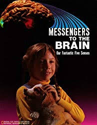 Land Of The Ascending Dragon Rediscovering Vietnam 199 Paperback Messengers To Brain Our Fantastic Five Senses