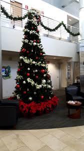 Holiday Plant Decorations Christmas Trees Lights Setup Dallas Ft Decor Tx