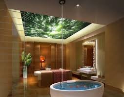 moderne und praktische inspirationen für ihre badezimmer decke