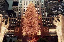 Rockefeller Center Christmas Tree Lighting 2014 Live by Rockefeller Center Attractions U0026 History