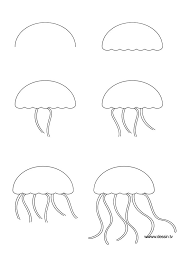 28 Collection Of Basic Drawing Steps