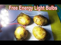 free energy light bulbs using potato